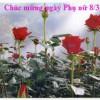 Lịch sử Ngày Quốc Tế Phụ nữ mồng 8 tháng 3